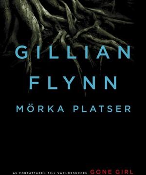 Gillian Flynn - Mörka platser