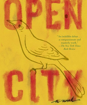 Omslag: Teju Cole - Open city